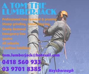 Tom the Lumberjack